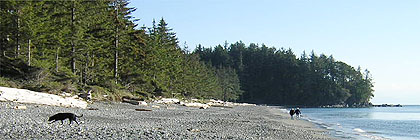 French Beach, Vancouver Island, BC