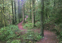 Goldstream Park Campgrounds BC