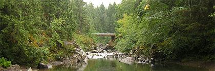Kinsol Trestle Bypass Trans Canada Trail Vancouver Island Section BC