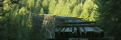 Kinsol Trestle Trans Canada Trail Vancouver Island Section BC
